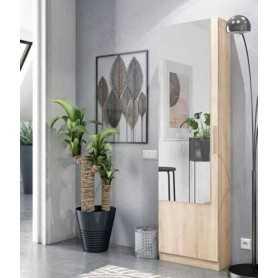Mueble zapatero kit 1 puerta + espejo modelo Coral roble